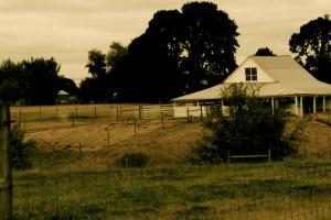 Farm w